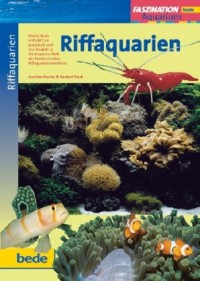 faszination_riffaquarien_faszination_aquarium